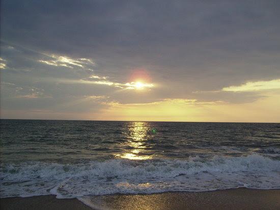 vero beach tourism and vacations 37 things to do in vero beach vero beach 550x412