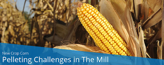 New Crop Corn – Pelleting Challenges in The Mill | PellTech
