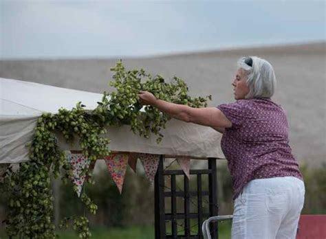 Hops for Decoration   A Bushel of Hops
