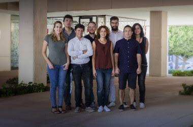 <p>En la imagen, el equipo de investigación delInstituto de Neurociencias de Alicante. / UMH</p>