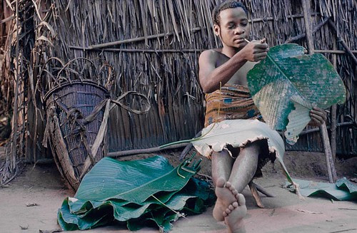 ngandu tribe