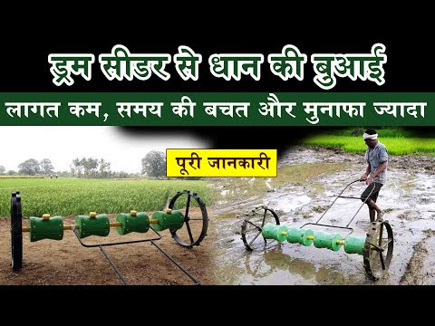 Rice cultivation through Drum Seeder