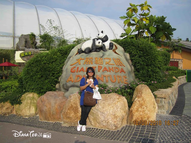 Giant Panda Adventure, Hong Kong