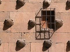 Casa de las conchas, en Salamanca