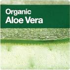Organic Aloe Vera -