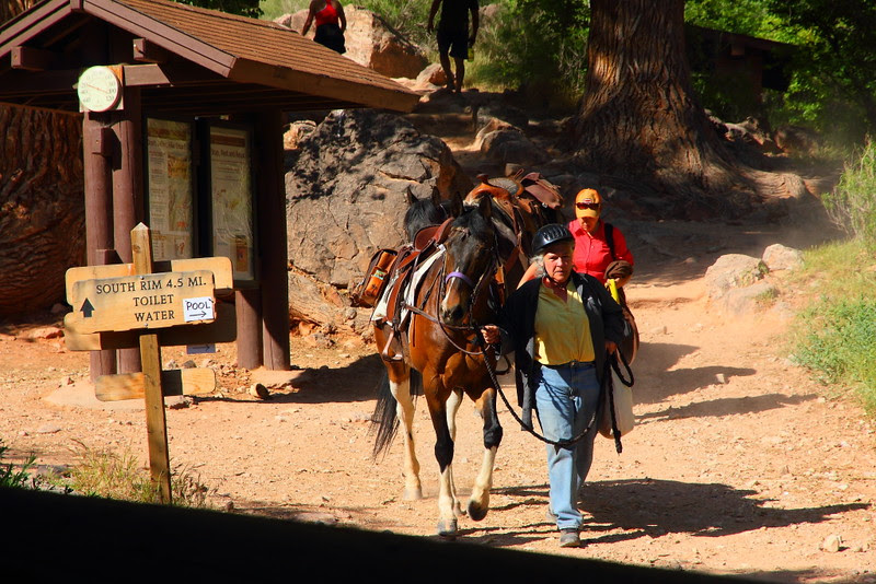 IMG_2307 Indian Garden, Bright Angel Trail