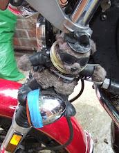 Read Biker Ted Diaries