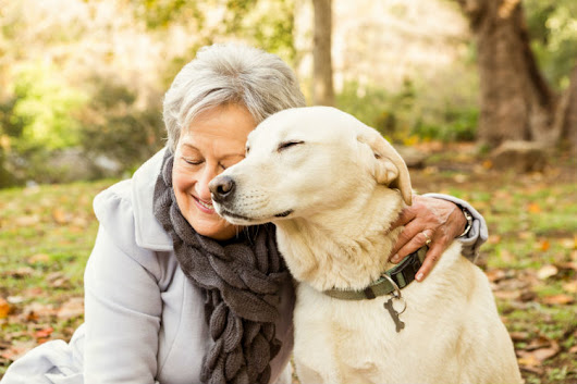 The Healing Power of Pets for Seniors - AgingCare.com