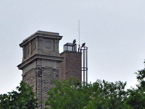 Mom and Dad on the Hospital Chimney