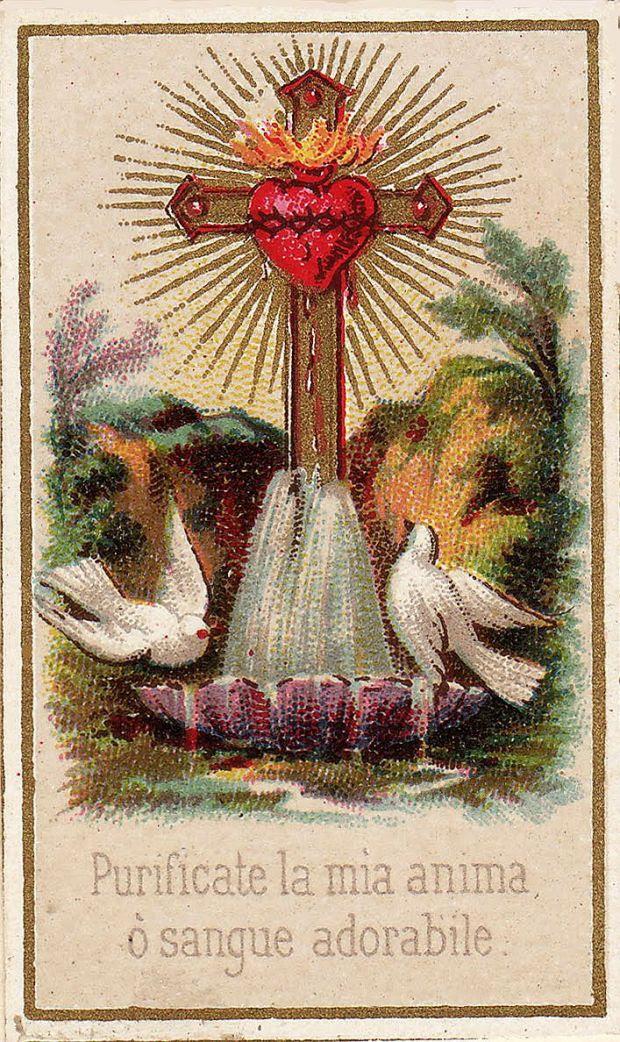 Purify my soul, O Adorable Blood
