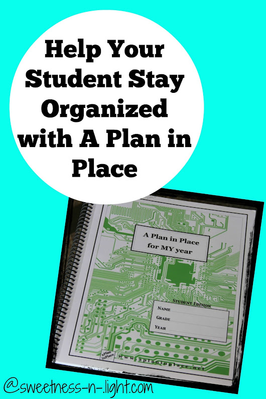 Help Your Teens Stay Organized with A Plan in Place - The Curriculum Choice