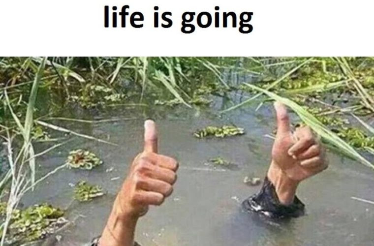 Everything Is Fine Funny Pictures Quotes Memes Funny Images
