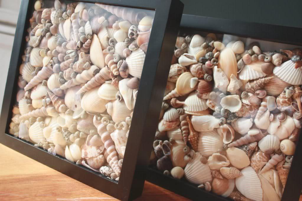 deniz-kabugu-midye-ahsap-pano-tablo-duvar-susu