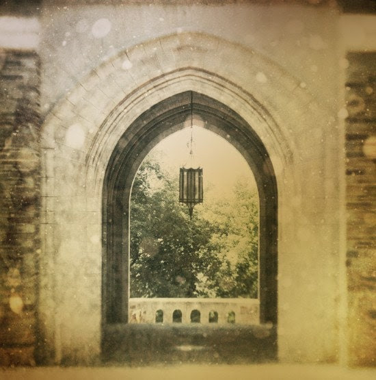 Waiting on A Fairytale 10x10 metallic fine art photograph - 20% off or buy one get one free