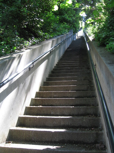 Public Stairs:  Summit Avenue to Westover Road