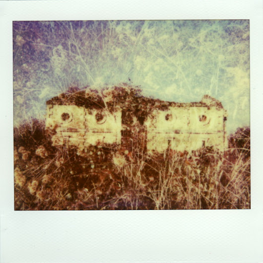 Yet Another Life Season / Denis Olivier / Photography, Polaroid, instant film