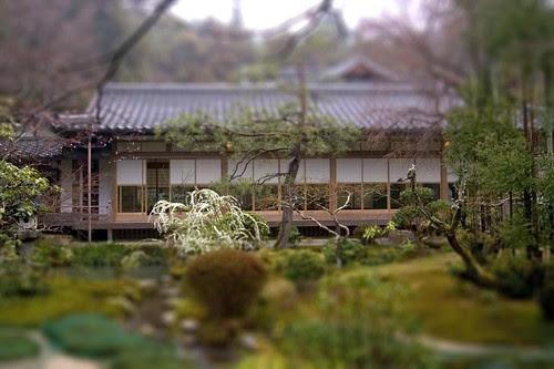 tilt shift Japanese garden