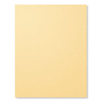 So Saffron A4 Card Stock