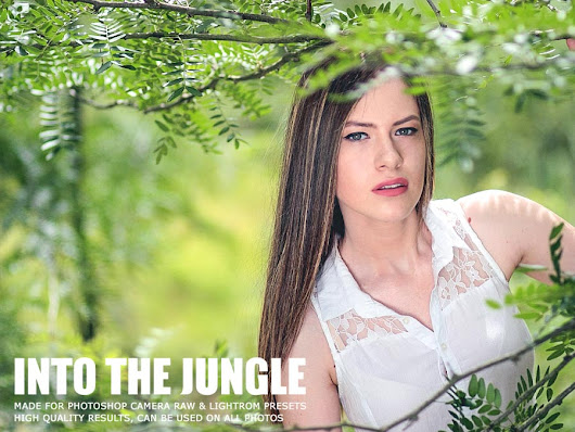 Free Into The Jungle Lightroom Presets Ver.1