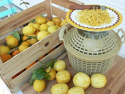 vin de citron.jpg