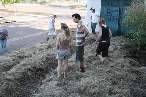 Malak community garden.2
