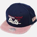 Mitchell and Ness Chicago Bulls OG USA Snapback Hat