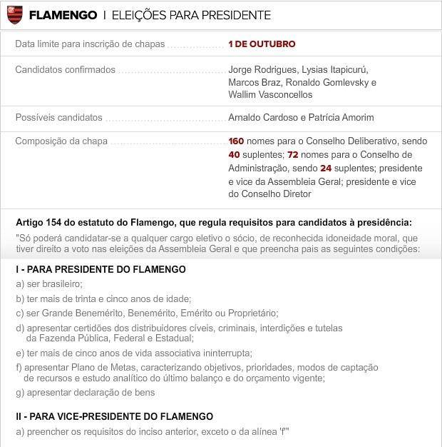 Info Eleicoes FLA 3 (Foto: infoesporte)