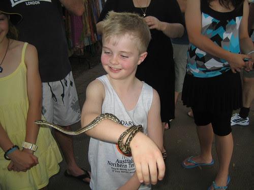 snake mindil 004