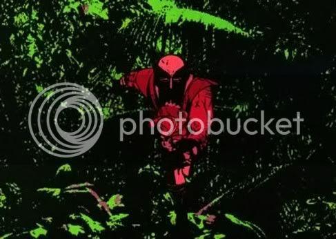 Wolverine na floresta de Zwartheid