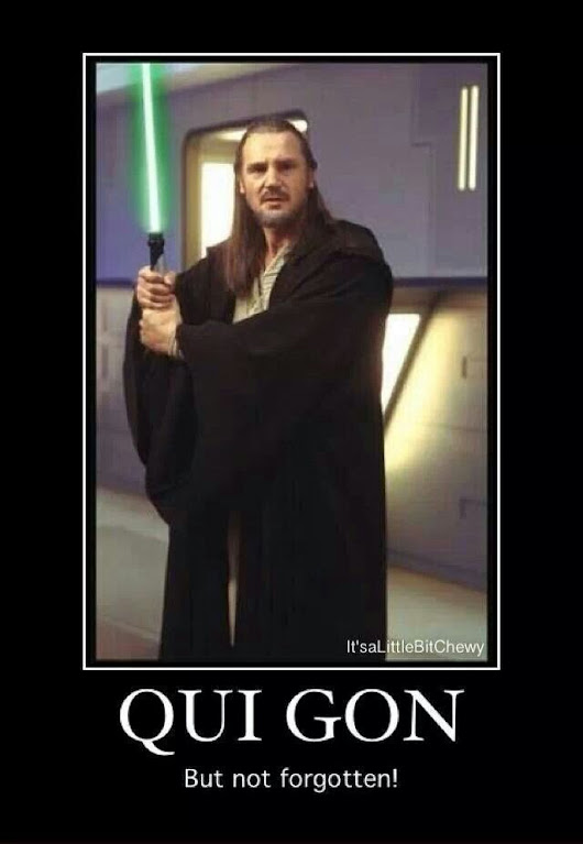 Qui-Gon Jinn had a particular set of Skills