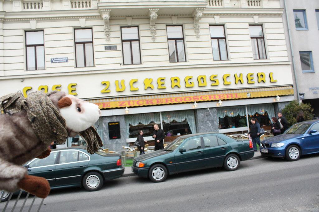 Wiesel in der Innenstadt und der Bücherei 066