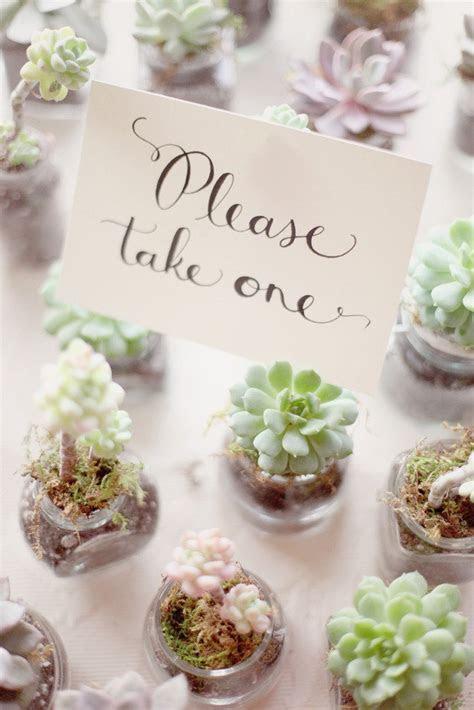 Succulent wedding favor   Wedding Favor ideas