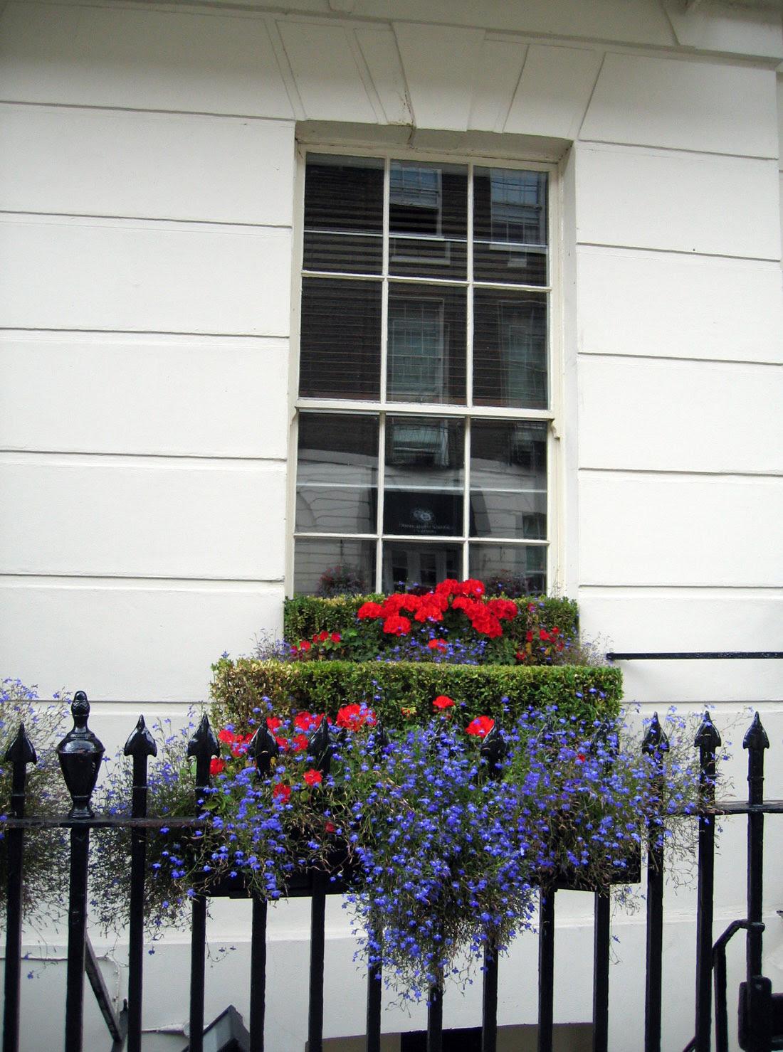London window // Janela