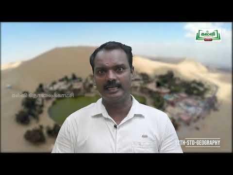 12th Geography அலகு 2 குடியிருப்புகள் Kalvi TV