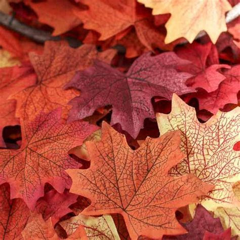 Realistic Autumn Artificial Maple Leaves   Fall Florals