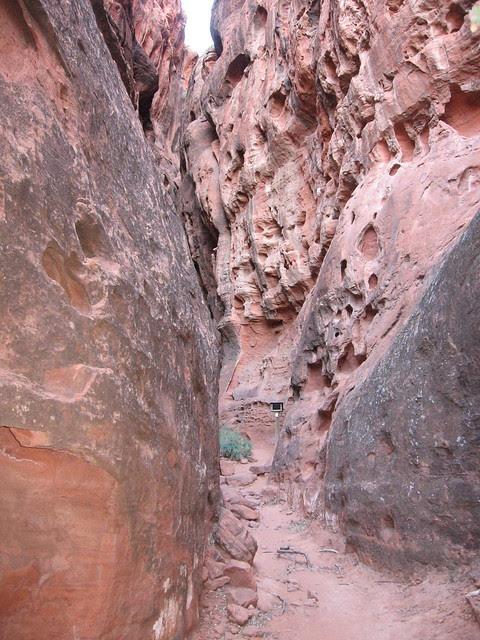 Snow Canyon 11.20.06
