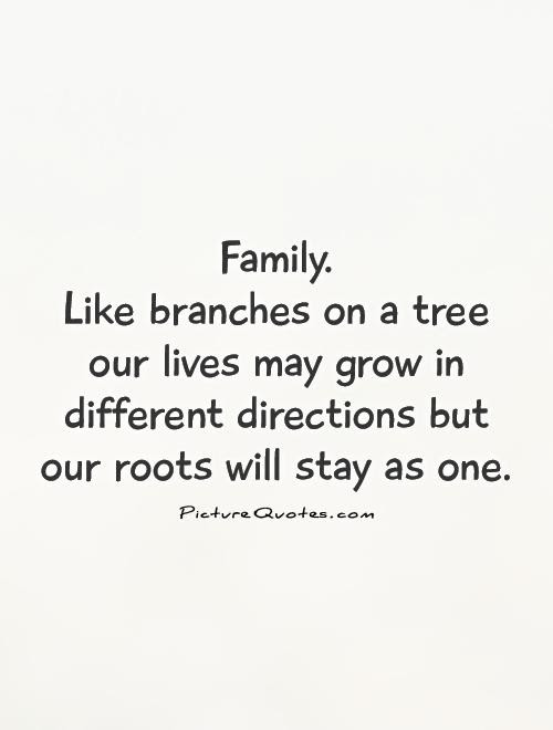 Family Like Branches On A Tree Our Lives May Grow In Different