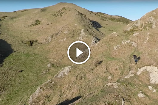 Watch: This Stay-at-Home New Zealand Dad Gets After It on His MTB - Singletracks Mountain Bike News