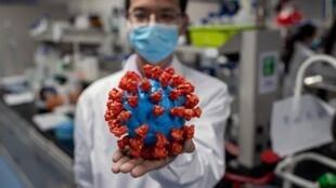 关于新冠肺炎病毒图