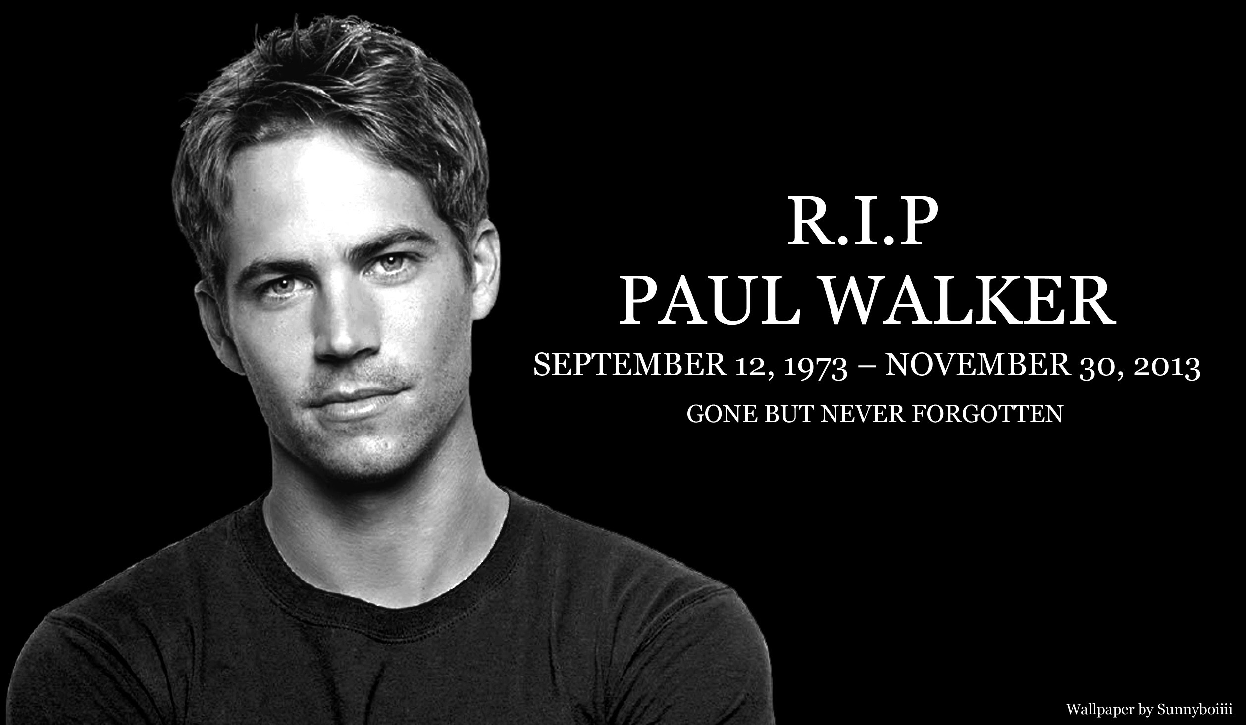 Paul Walker Wallpapers 67 Images