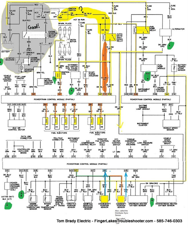 Diagram Honda City 2010 Wiring Diagram India Full Version Hd Quality Diagram India Humanbodydiagrams Antonellabevilacqua It