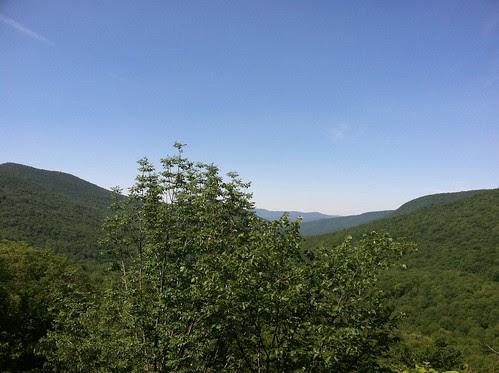 found vista