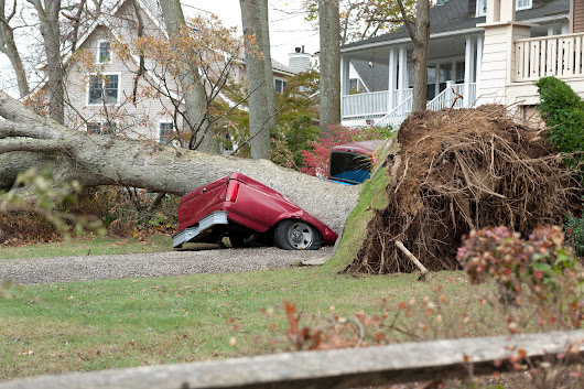 If Mother Nature knocks over a tree in your yard, do you have insurance coverage?