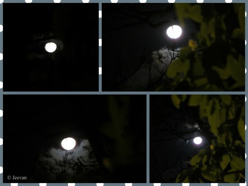 Glimpses of moon