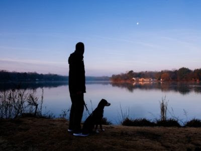Training your dog to enjoy time spent in and around water -