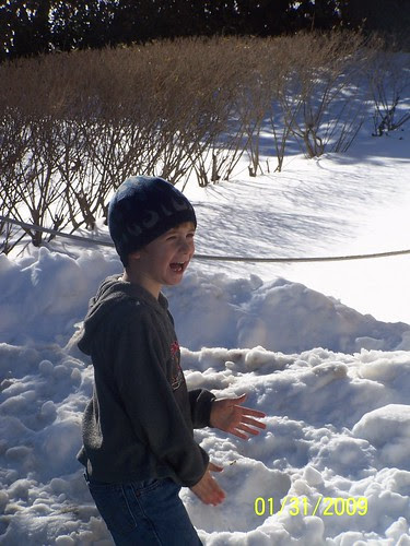 Throwing snowballs at the zoo