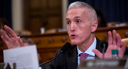 Gowdy says courts must settle Trump transition team's spat with Mueller - POLITICO