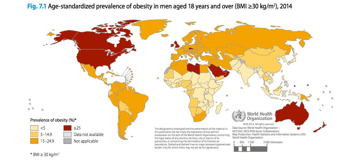 high body fat percentage low bmi