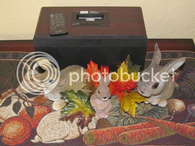 photo 2012-10-22225408_zps0ce4d65c.jpg