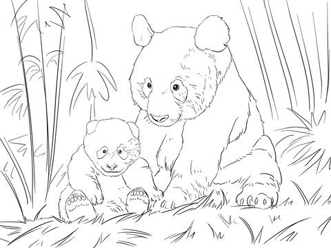 かわいいパンダの家族 ぬりえ